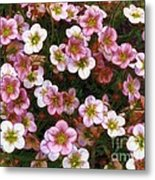 Here's Flowers For You Metal Print