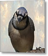 Here's Lookin' At You Metal Print