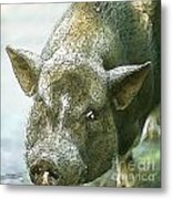 Here's Woody Metal Print by Artist and Photographer Laura Wrede