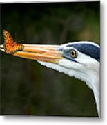 Heron And Butterfly Metal Print