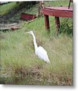 Heron And The Canal Metal Print