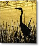 Heron At Sunrise Metal Print