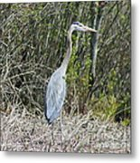 Heron Height Metal Print