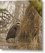 Heron In A Fog Metal Print