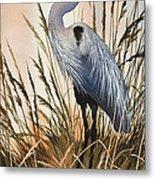Heron In Tall Grass Metal Print