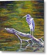 Heron Watching Metal Print