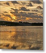 Herons And Egrets And Porpoise Oh My Metal Print