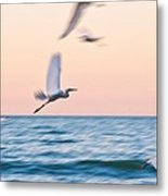 Herons Flying Over The Sea  Metal Print