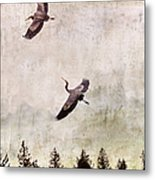Herons In Flight Monotone Metal Print