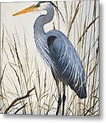 Herons Natural World Metal Print