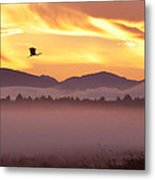 Heron's Sunrise Metal Print