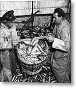 Herring Fishing Howth 1955  Metal Print
