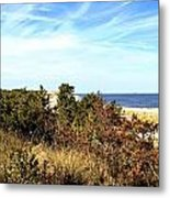 Herring Point Metal Print