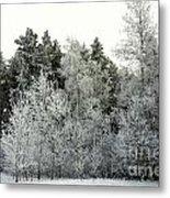 Hersey Lake Under Snow Metal Print