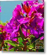 Hervey Bay Flowers Metal Print