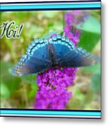 Hi Hello Greeting Card - Red Spotted Purple Butterfly Metal Print