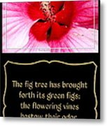 Hibiscus Closeup With Bible Quote From Song Of Songs Metal Print