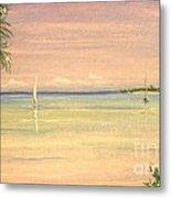 Hibiscus Cove Metal Print by The Beach  Dreamer
