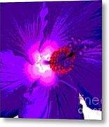 Hibiscus - Flower - Ile De La Reunion - Reunin Island Metal Print