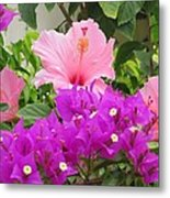 Hibiscus In Spring Metal Print by Diane Mitchell