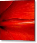 Hibiscus Red Metal Print