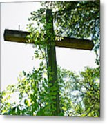 Hidden Faith Metal Print