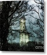 Hidden In Montgomery Metal Print