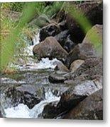 Hidden River Metal Print