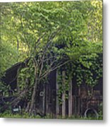 Hidden Treasure Metal Print by Robert J Andler