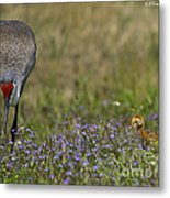 Hiding In The Flowers Metal Print