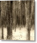 Hiding In The Trees By Diana Sainz Metal Print
