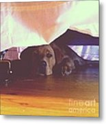 Hiding Under The Bed Metal Print