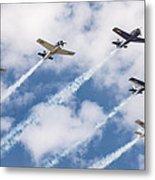 High Flying Five Metal Print
