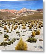 High In The Chilean Altiplano Metal Print