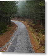 High Mountain Road Metal Print