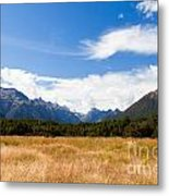 High Peaks Of Eglinton Valley In Fjordland Np Nz Metal Print