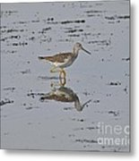 High Stepper Metal Print