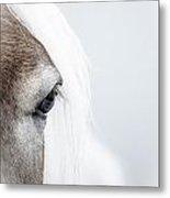 Highkey Horse Eye Metal Print