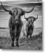 Highlands Metal Print