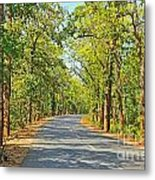 Highway In The Forest Metal Print