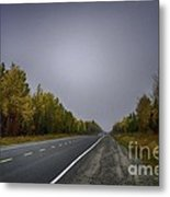 Highway Of Foliage Metal Print