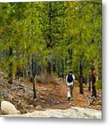 Hike On 2 Metal Print