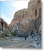 Hiker In Big Painted Canyons Trail In Mecca Hills-ca Metal Print