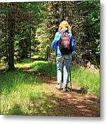 Hiker In The Forest Metal Print