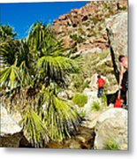 Hikers At Oasis On Borrego Palm Canyon Trail In Anza-borrego Desert Sp-ca  Metal Print