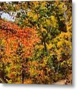 Hiking In Autumn Metal Print