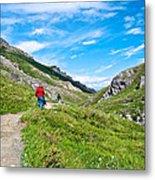 Hiking On Savage River Trail In Denali Np-ak    Metal Print