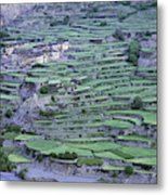 Hill Modified For Agriculture, Tetang Metal Print