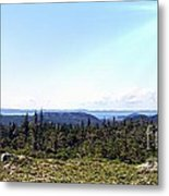 Hill View - Summer - Berry Picking Barrens Metal Print