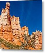 Hillside Carvings Metal Print